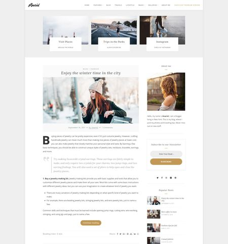 20+ Best free WordPress Blog Themes for 2019