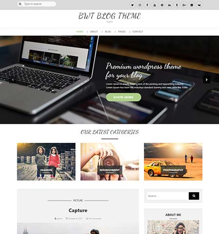 best wordpress theme free