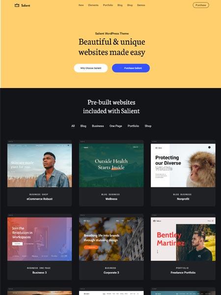 Salient Best Multipurpose WordPress themes