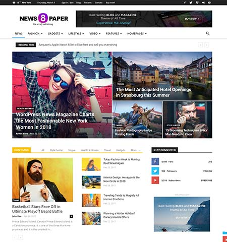 Premium WordPress blog themes