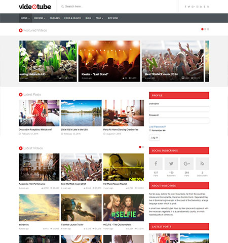 WordPress video theme