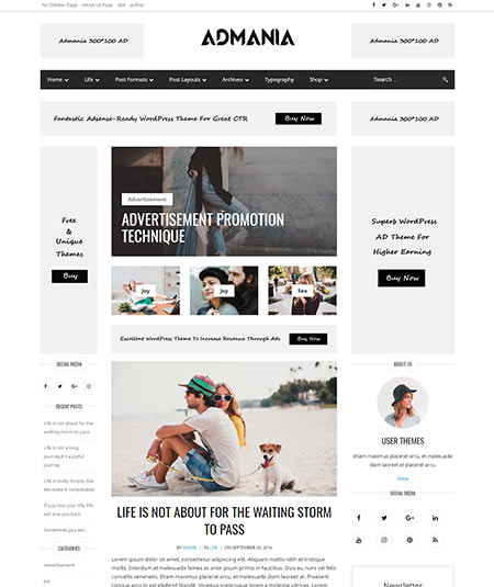 wbest wordpress themes with advertising space