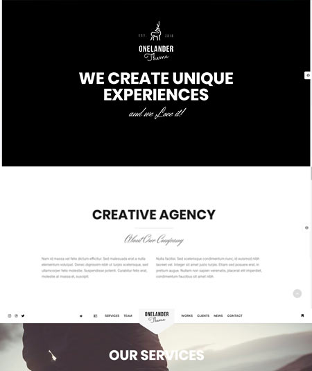 wordpress themes with landing page