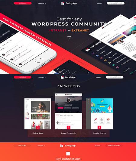 25+ Best WordPress social network themes in 2019