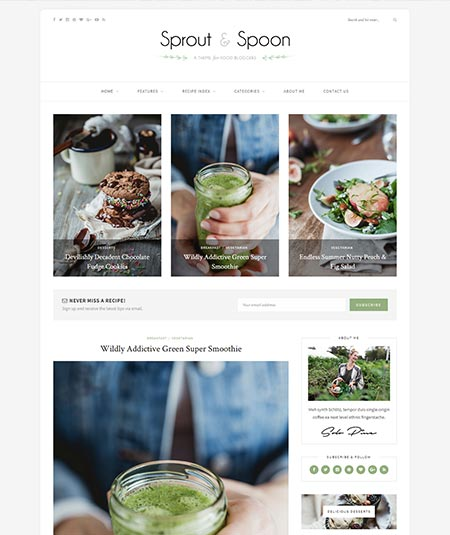 food recipes wordpress theme free download
