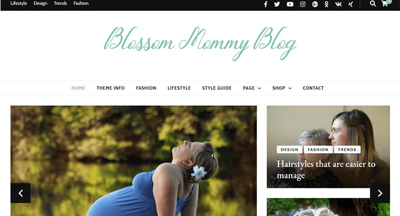 Blossom-Mommy Blog