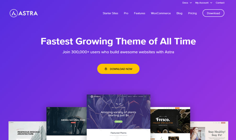 astra WordPress themes for affiliate marketing