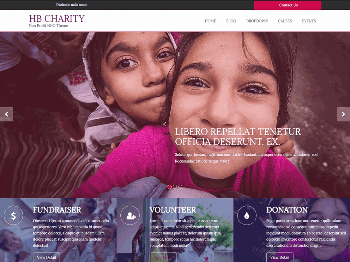 best free wordpress themes for nonprofit organizations