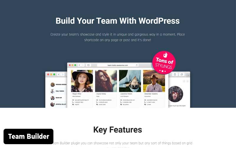 Team-Builder-showcase-plugin