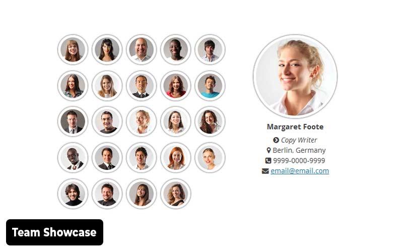 Team-Showcase-team-member-wordpress-plugin