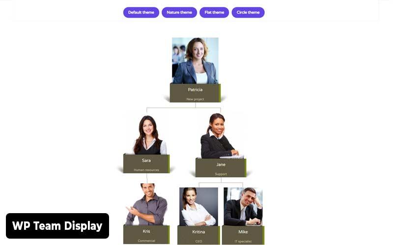 WP-Team-Display-showcase-plugin