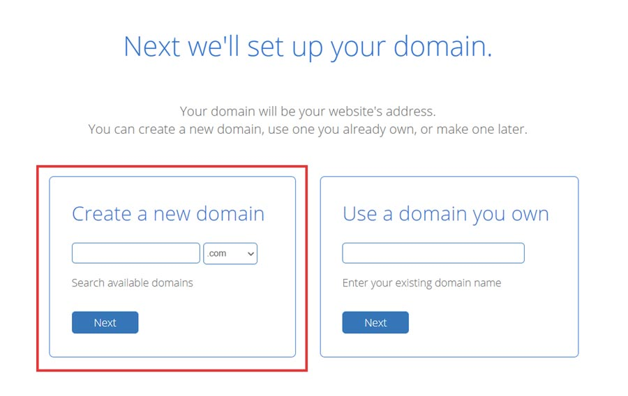 Select the domain name